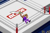 Fire Pro Wrestling 2 Game Boy Advance Facelock
