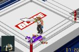 Fire Pro Wrestling 2 Game Boy Advance Is there anybody in there?