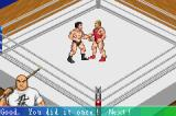 Fire Pro Wrestling 2 Game Boy Advance Instructions are given on the fly