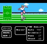 Tecmo Cup: Soccer Game NES The star of the game, Robin, in front of goal.
