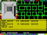Swords & Sorcery ZX Spectrum Moving a bit