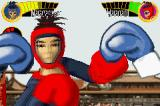 Boxing Fever Game Boy Advance Boxing Fever uses blur effects when you take a hit.