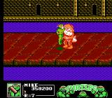 Teenage Mutant Ninja Turtles III: The Manhattan Project NES Leatherhead doesn't take any attitude from anybody. I guarantee.