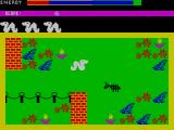 Wriggler ZX Spectrum Watch out for the ant