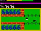 Wriggler ZX Spectrum I was right. It hurt.