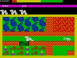 Wriggler ZX Spectrum This route is narrow