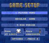 Brett Hull Hockey 95 SNES Game setup