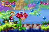 Rayman: 10th Anniversary Game Boy Advance Rayman is now about to jump around a plant to collect some tings...