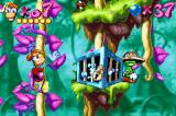 Rayman: 10th Anniversary Game Boy Advance While climbs in a vine, Rayman waits the time to break a Small Livingstone-watched Electoon cage.