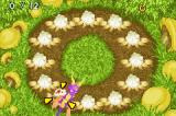 The Legend of Spyro: A New Beginning Game Boy Advance A mini-game - whack the Bulb Spiders before time runs out!