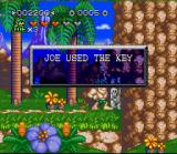 Joe & Mac 2: Lost in the Tropics SNES I used the key to open the door to exit the level.