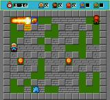Bomberman DOS Bomb will destroy surrounding walls, but if detonated near the item that can be picked, the item will be destroyed.