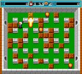 Bomberman DOS On level one, you have everything at low, your speed, bomb explosion range, number of bombs...
