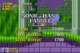 Sonic the Hedgehog Game Boy Advance Marble Zone clear!