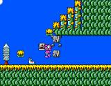 Sapo Xulé vs. Os Invasores do Brejo SEGA Master System Porcopum breaking some rock blocks.