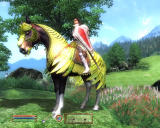The Elder Scrolls IV: Knights of the Nine Windows You can also purchase an Elven armor (Horse Armor - bonus content).