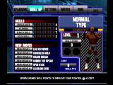 Ultimate Fighting Championship Dreamcast You can upgrade your fighter with points earned by winning fights