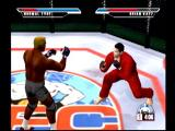 Ultimate Fighting Championship Dreamcast There are multiple fighting styles available