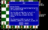 The Fidelity Chessmaster 2100 DOS Help text for one of topics