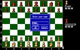 The Fidelity Chessmaster 2100 DOS Entering the player's name