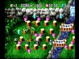 Bomberman World PlayStation Most of the levels include separate areas to fight in.