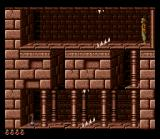 Prince of Persia SNES I must reach that potion