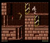 Prince of Persia SNES I've jumped through the mirror