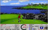 Links: Championship Course - Mauna Kea DOS the scenic 3rd hole - Links 386 SVGA