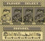 Teenage Mutant Ninja Turtles II:  Back from the Sewers Game Boy Select Your Turtle