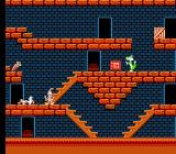 The Bugs Bunny Crazy Castle NES Wile E. Coyote lay wounded on the floor.