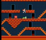 The Bugs Bunny Crazy Castle NES Hopping onto the green Wile E. Coyote's corpse. Who knew a Bugs Bunny game could be so morbid?