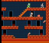 The Bugs Bunny Crazy Castle NES Cornered!