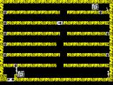 Quadrax ZX Spectrum level 40