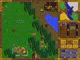 Heroes of Might and Magic DOS Grass
