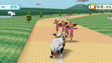 Wii Play Wii Cow racing, popular Nintendo sport