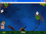 Amazon Trail 3rd Edition Windows The fishing mini-game