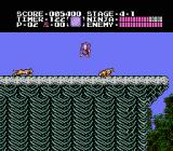 Ninja Gaiden NES You make your way to a vantage point at the end of 4-1