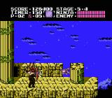 Ninja Gaiden NES Facing off with the stage 5 boss -- Bloody Malth