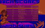 Windsurf Willy Atari ST High scores