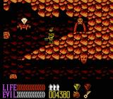 Wizards & Warriors III: Kuros - Visions of Power NES Deep in a cavern