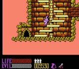 Wizards & Warriors III: Kuros - Visions of Power NES Battling up the tower