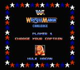 WWF Wrestlemania Challenge NES I just like his mustache...