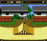 Skate or Die 2: The Search for Double Trouble NES Wee!