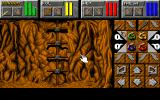 Dungeon Master II: Skullkeep DOS Climb the ladder