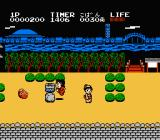 Ganbare Goemon! Karakuri Dōchū NES Jump over those wells to get money