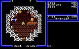 Ultima V: Warriors of Destiny DOS Starting location: Iolo's hut