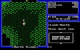 Ultima V: Warriors of Destiny DOS You'll have to learn how to read runic alphabet in order to succeed in Ultima V.