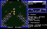 Ultima V: Warriors of Destiny DOS Sometimes defeated enemies leave you very good stuff. Like a fried chicken.