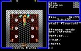 Ultima V: Warriors of Destiny DOS The throne room looks so deserted without its rightful owner!
