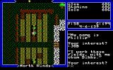 Ultima V: Warriors of Destiny DOS Usual conversation with routine questions: Name and Job.